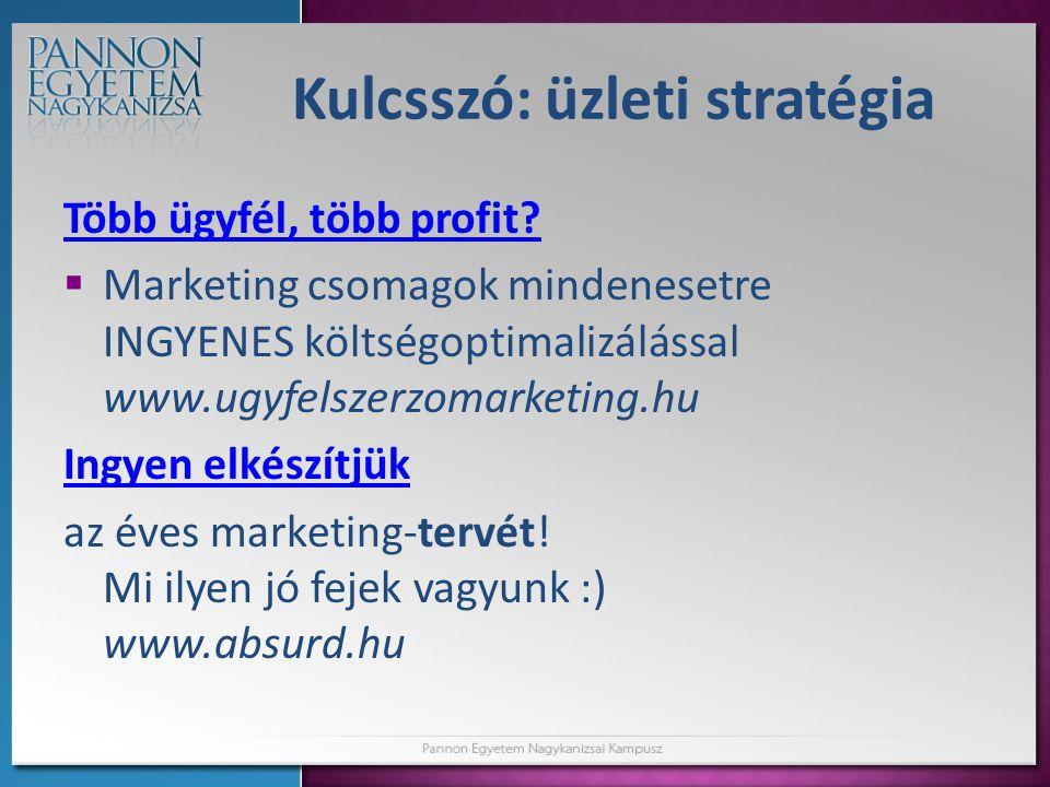 Kulcsszó: üzleti stratégia Több ügyfél, több profit.