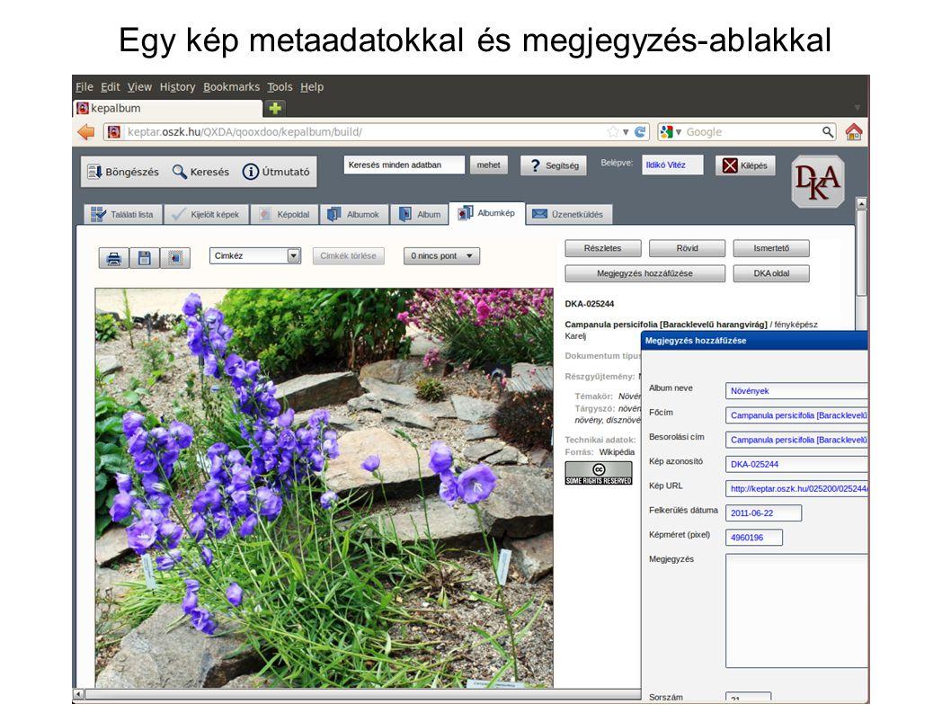 Egy kép metaadatokkal és megjegyzés-ablakkal
