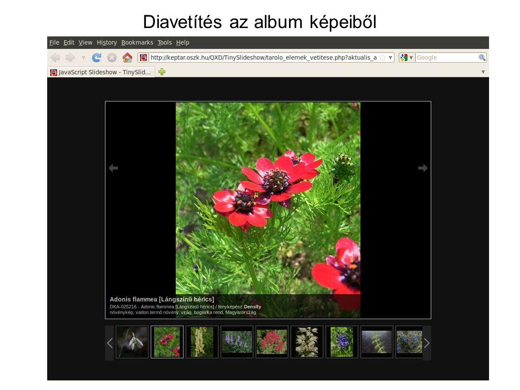 Diavetítés az album képeiből