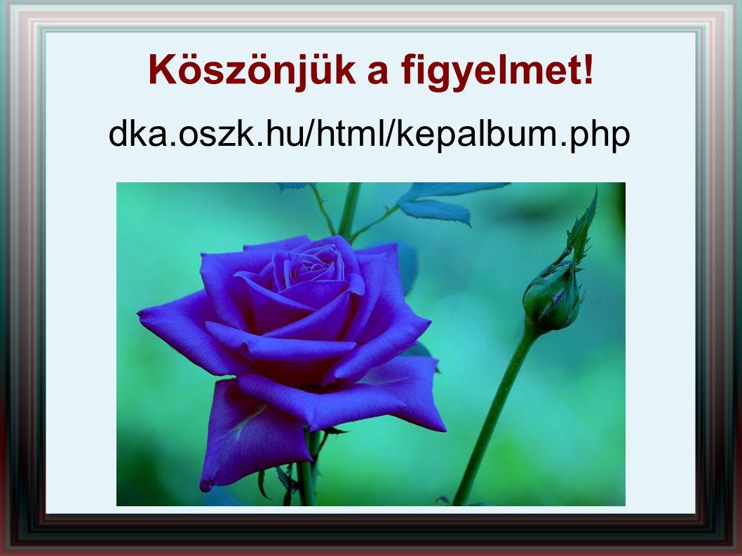 Köszönjük a figyelmet! dka.oszk.hu/html/kepalbum.php
