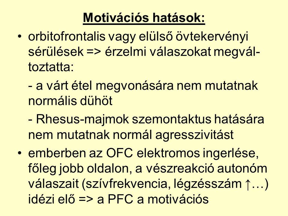 Motivációs hatások: •orbitofrontalis vagy elülső övtekervényi sérülések => érzelmi válaszokat megvál- toztatta: - a várt étel megvonására nem mutatnak normális dühöt - Rhesus-majmok szemontaktus hatására nem mutatnak normál agresszivitást •emberben az OFC elektromos ingerlése, főleg jobb oldalon, a vészreakció autonóm válaszait (szívfrekvencia, légzésszám ↑…) idézi elő => a PFC a motivációs