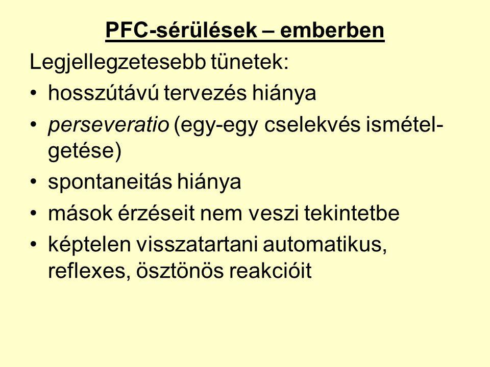 PFC-sérülések – emberben Legjellegzetesebb tünetek: •hosszútávú tervezés hiánya •perseveratio (egy-egy cselekvés ismétel- getése) •spontaneitás hiánya •mások érzéseit nem veszi tekintetbe •képtelen visszatartani automatikus, reflexes, ösztönös reakcióit