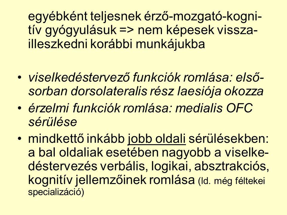 egyébként teljesnek érző-mozgató-kogni- tív gyógyulásuk => nem képesek vissza- illeszkedni korábbi munkájukba •viselkedéstervező funkciók romlása: els