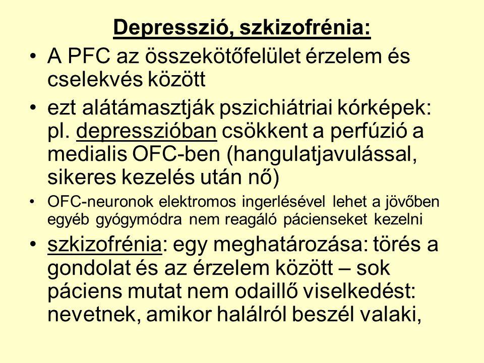 Depresszió, szkizofrénia: •A PFC az összekötőfelület érzelem és cselekvés között •ezt alátámasztják pszichiátriai kórképek: pl. depresszióban csökkent