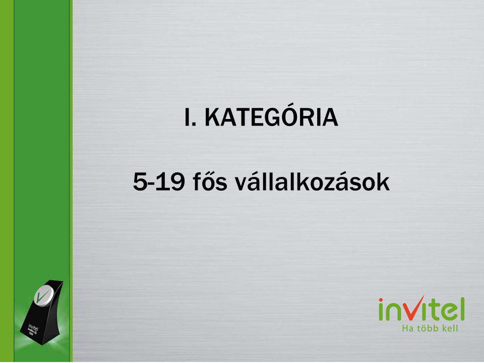 I. KATEGÓRIA 5-19 fős vállalkozások