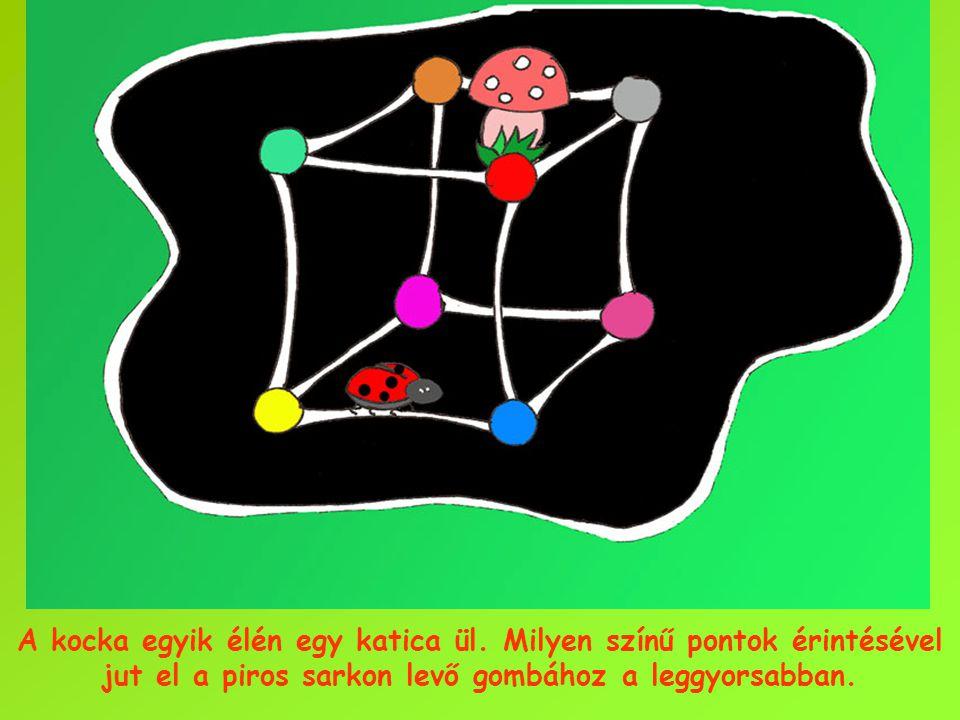 A kocka egyik élén egy katica ül. Milyen színű pontok érintésével jut el a piros sarkon levő gombához a leggyorsabban.