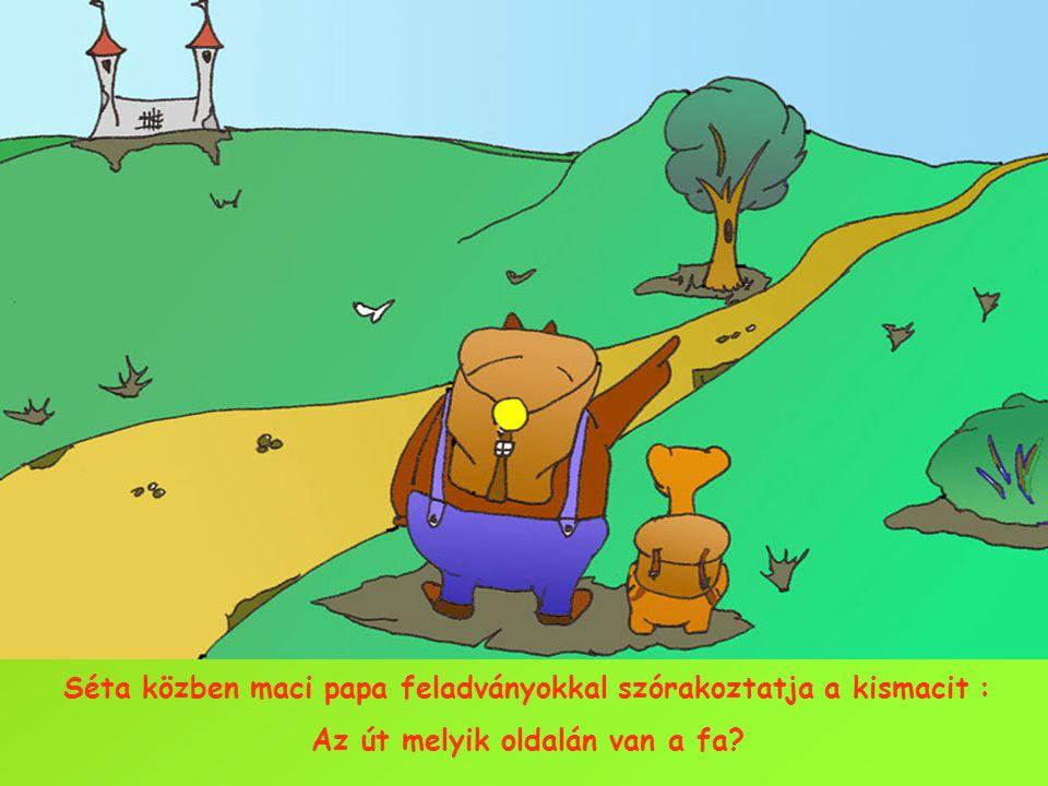 Séta közben maci papa feladványokkal szórakoztatja a kismacit : Az út melyik oldalán van a fa?