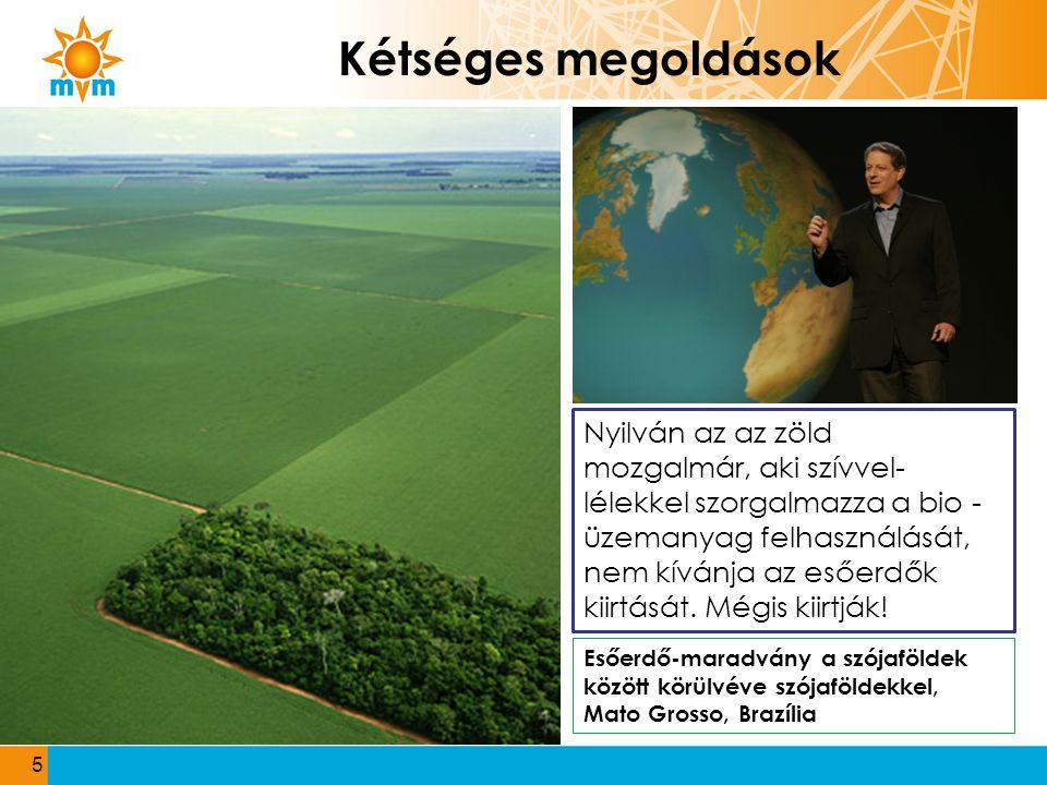 5 Kétséges megoldások Esőerdő-maradvány a szójaföldek között körülvéve szójaföldekkel, Mato Grosso, Brazília Nyilván az az zöld mozgalmár, aki szívvel