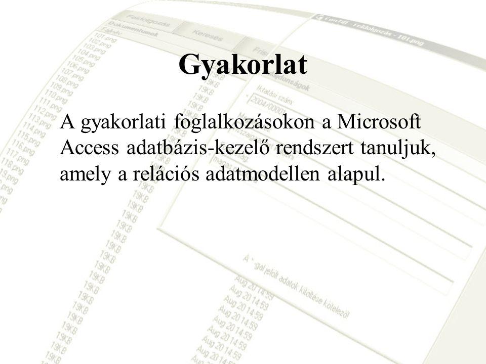 Gyakorlat A gyakorlati foglalkozásokon a Microsoft Access adatbázis-kezelő rendszert tanuljuk, amely a relációs adatmodellen alapul.