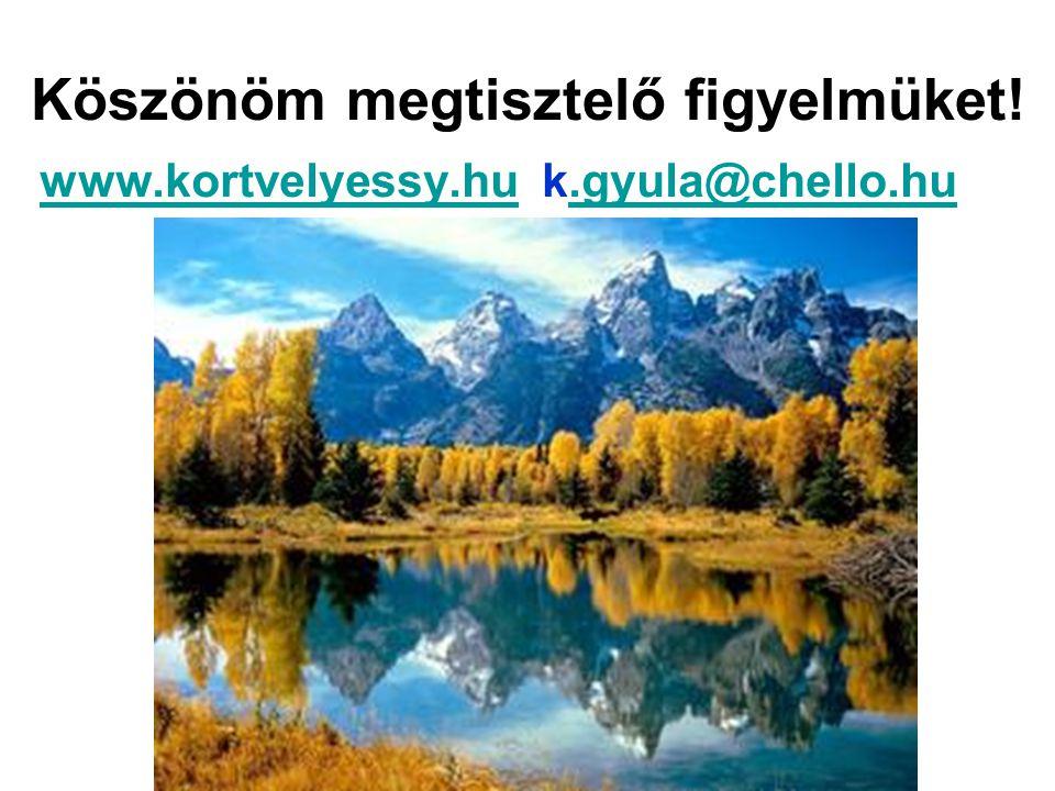 Köszönöm megtisztelő figyelmüket! www.kortvelyessy.huwww.kortvelyessy.hu k.gyula@chello.hu.gyula@chello.hu
