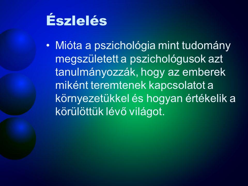Észlelés •Mióta a pszichológia mint tudomány megszületett a pszichológusok azt tanulmányozzák, hogy az emberek miként teremtenek kapcsolatot a környezetükkel és hogyan értékelik a körülöttük lévő világot.