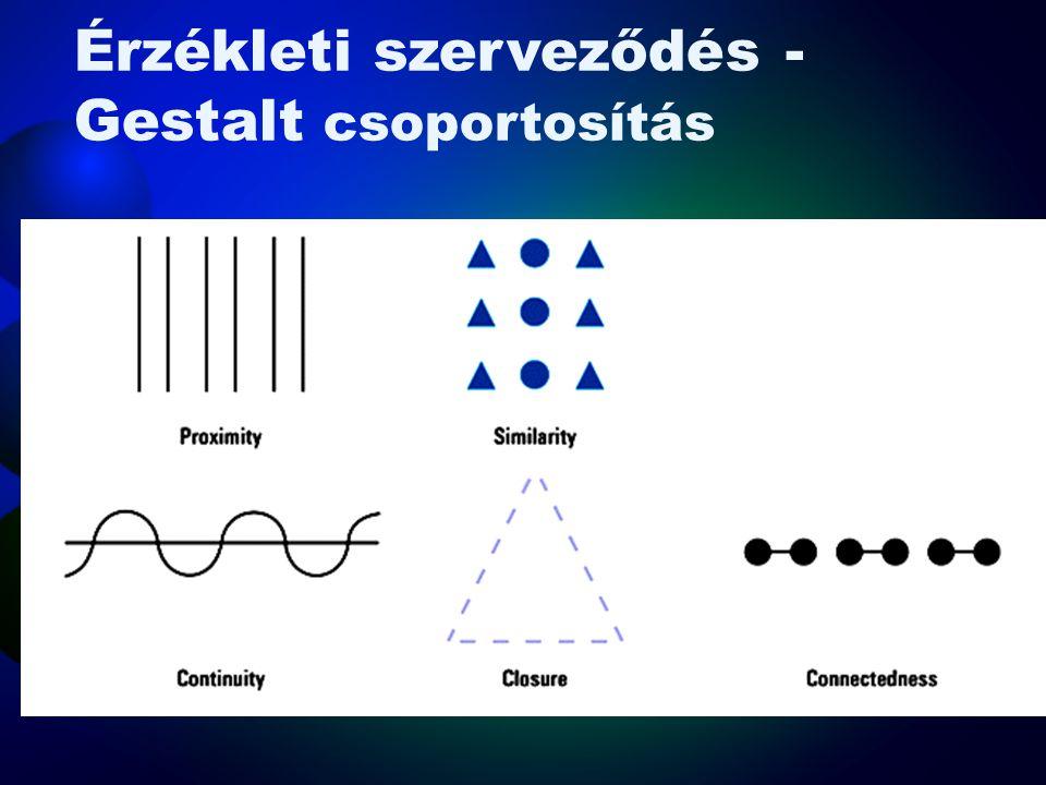Érzékleti szerveződés - Gestalt •Képi megragadás –Annak hajlandósága, hogy a képi érzékelés uralja a többi érzékletet •Csoportosítás –Az az érzékelésb