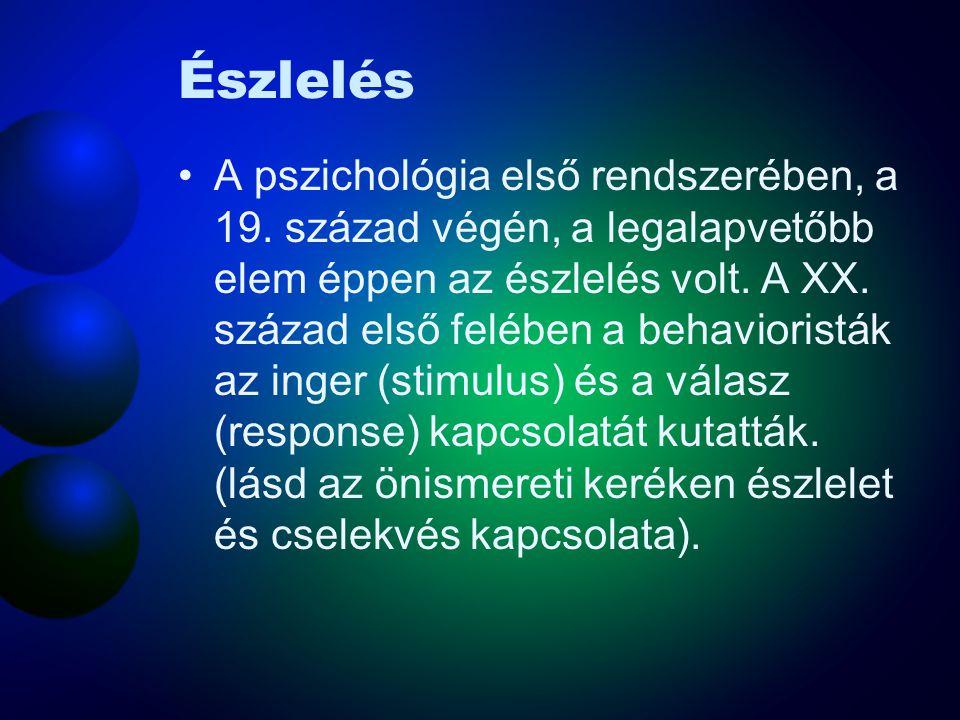 Észlelés •A pszichológia első rendszerében, a 19.