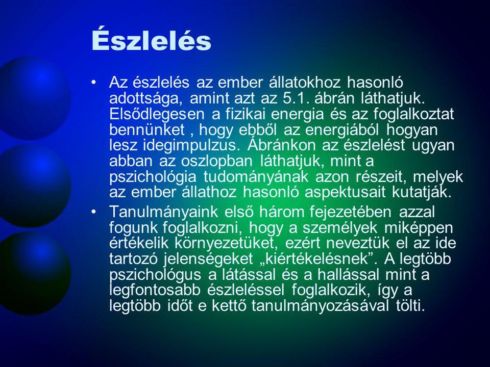 Érzékleti szerveződés - Gestalt csoportosítás •Gestalt csoportsitási elvek munka közben
