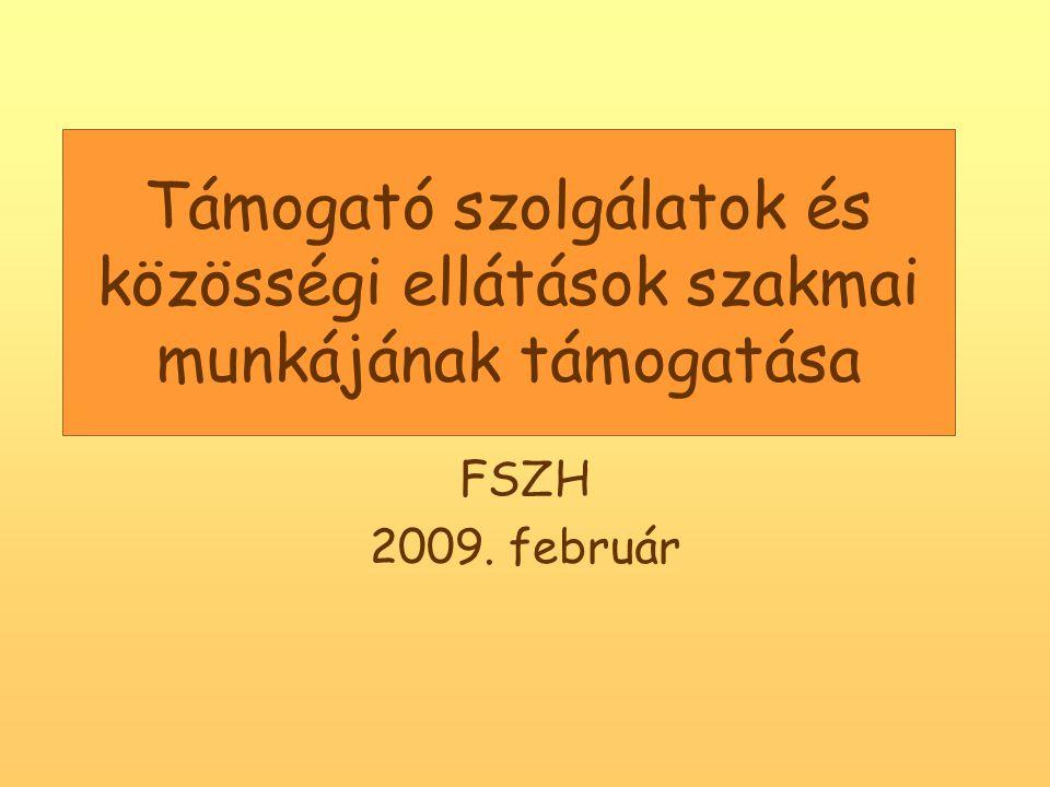 Támogató szolgálatok és közösségi ellátások szakmai munkájának támogatása FSZH 2009. február