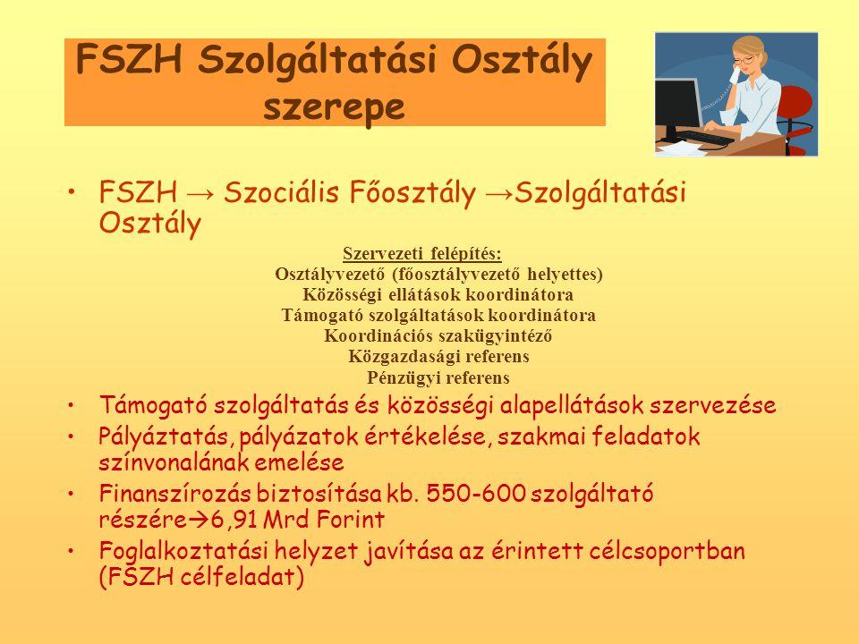 FSZH Szolgáltatási Osztály szerepe •FSZH → Szociális Főosztály → Szolgáltatási Osztály Szervezeti felépítés: Osztályvezető (főosztályvezető helyettes) Közösségi ellátások koordinátora Támogató szolgáltatások koordinátora Koordinációs szakügyintéző Közgazdasági referens Pénzügyi referens •Támogató szolgáltatás és közösségi alapellátások szervezése •Pályáztatás, pályázatok értékelése, szakmai feladatok színvonalának emelése •Finanszírozás biztosítása kb.