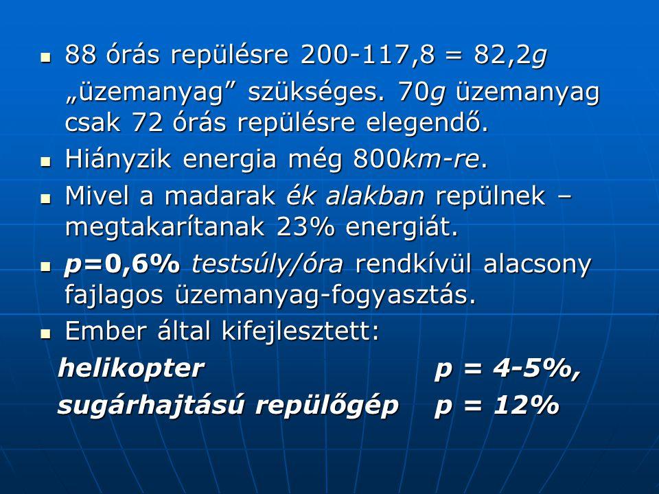 """ 88 órás repülésre 200-117,8 = 82,2g """"üzemanyag szükséges."""