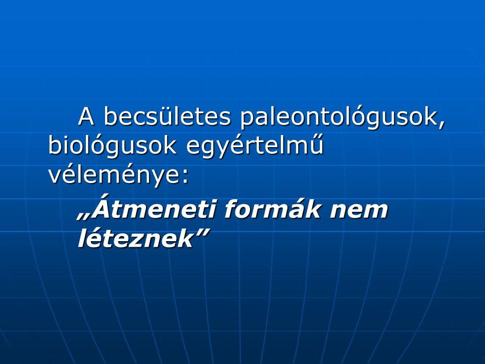 """A becsületes paleontológusok, biológusok egyértelmű véleménye: """"Átmeneti formák nem léteznek"""
