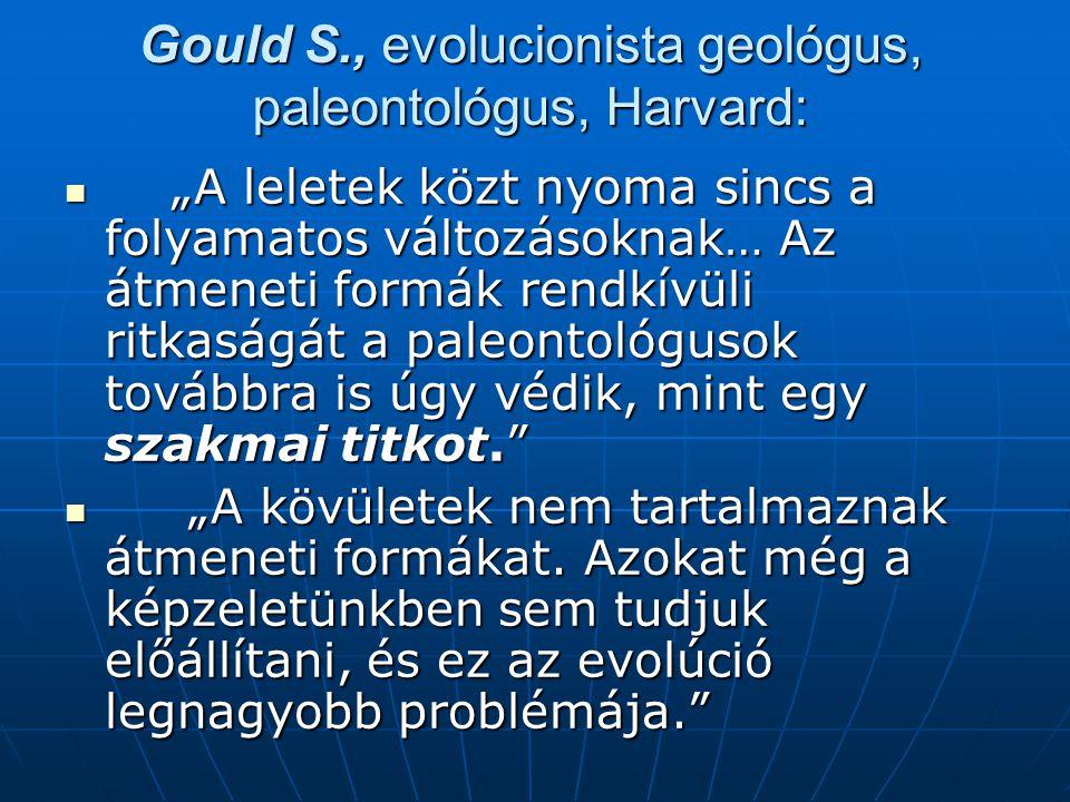 """Gould S., evolucionista geológus, paleontológus, Harvard:  """"A leletek közt nyoma sincs a folyamatos változásoknak… Az átmeneti formák rendkívüli ritkaságát a paleontológusok továbbra is úgy védik, mint egy szakmai titkot.  """"A kövületek nem tartalmaznak átmeneti formákat."""