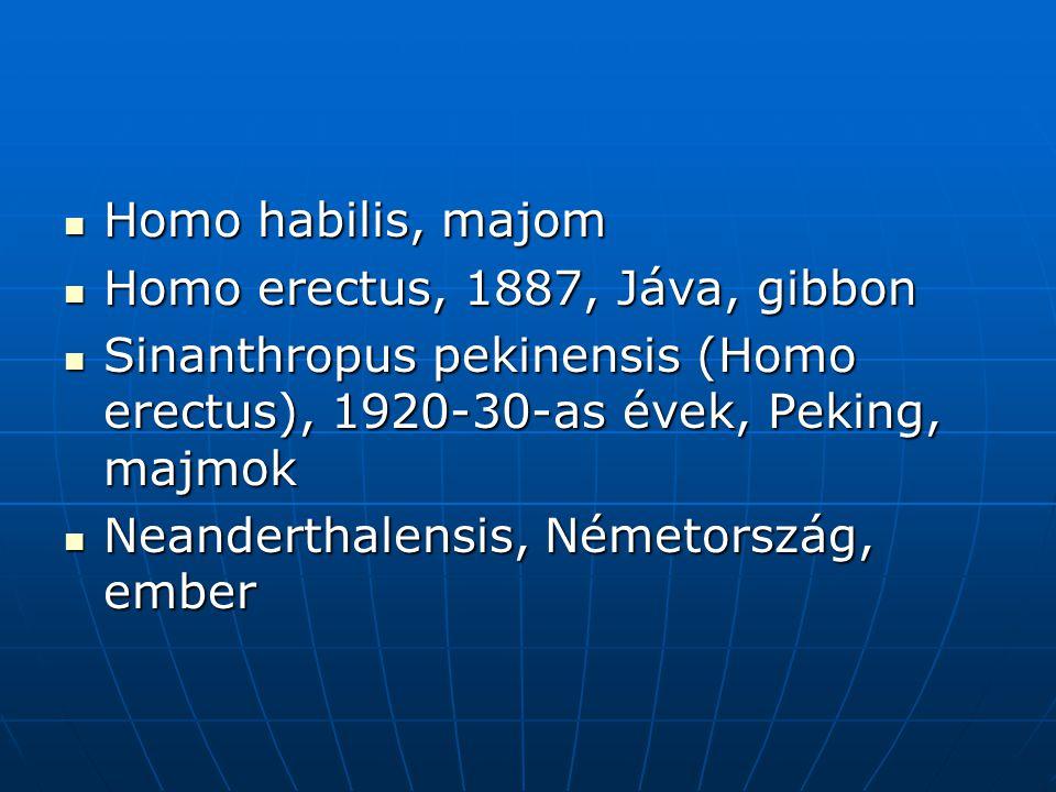  Homo habilis, majom  Homo erectus, 1887, Jáva, gibbon  Sinanthropus pekinensis (Homo erectus), 1920-30-as évek, Peking, majmok  Neanderthalensis, Németország, ember