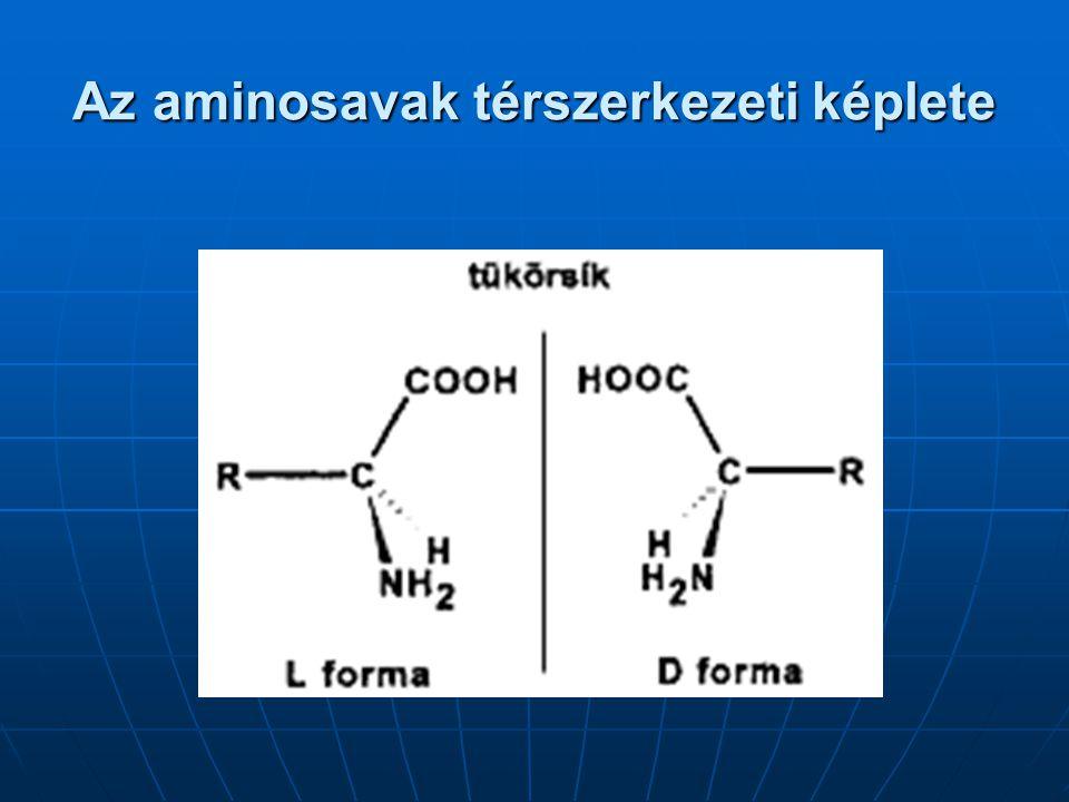 Az aminosavak térszerkezeti képlete