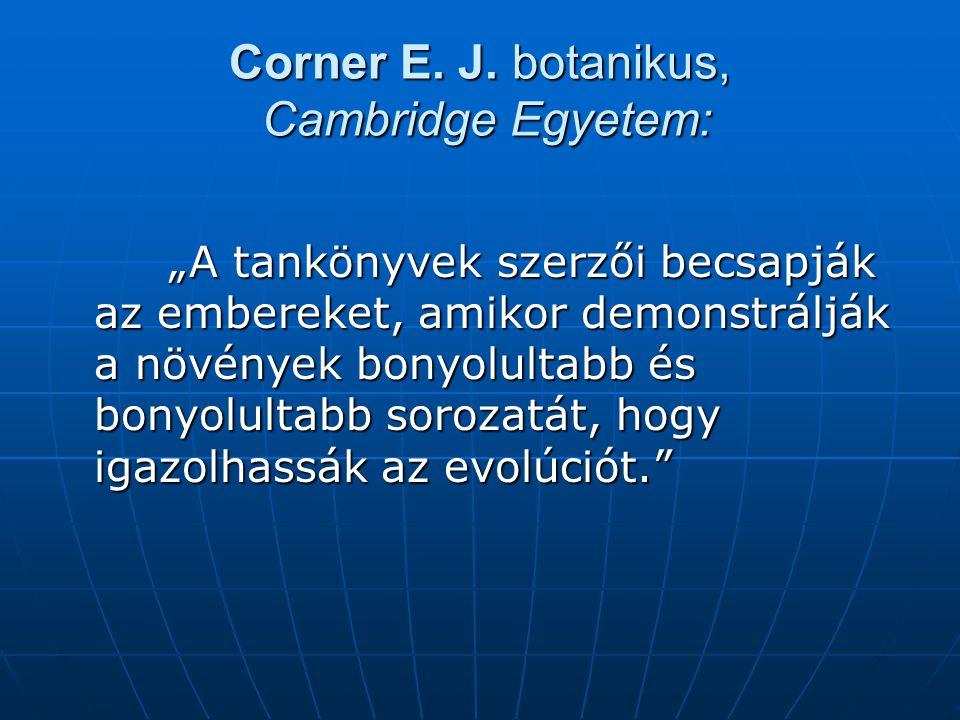 Corner E.J.