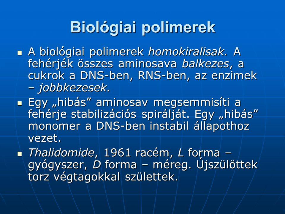 Egy hibát tartalmazó biológiai polimer
