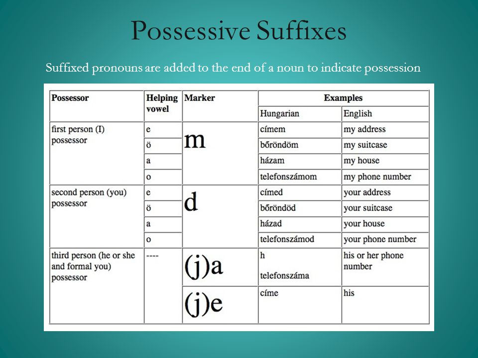 Possessive Suffixes Suffixed pronouns are added to the end of a noun to indicate possession