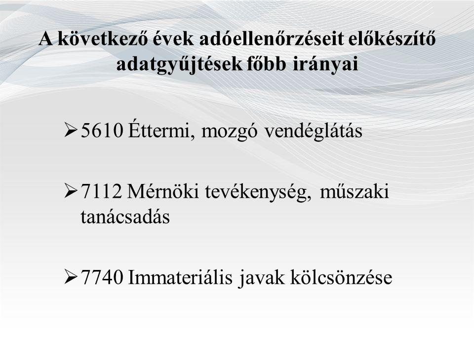  5610 Éttermi, mozgó vendéglátás  7112 Mérnöki tevékenység, műszaki tanácsadás  7740 Immateriális javak kölcsönzése A következő évek adóellenőrzése