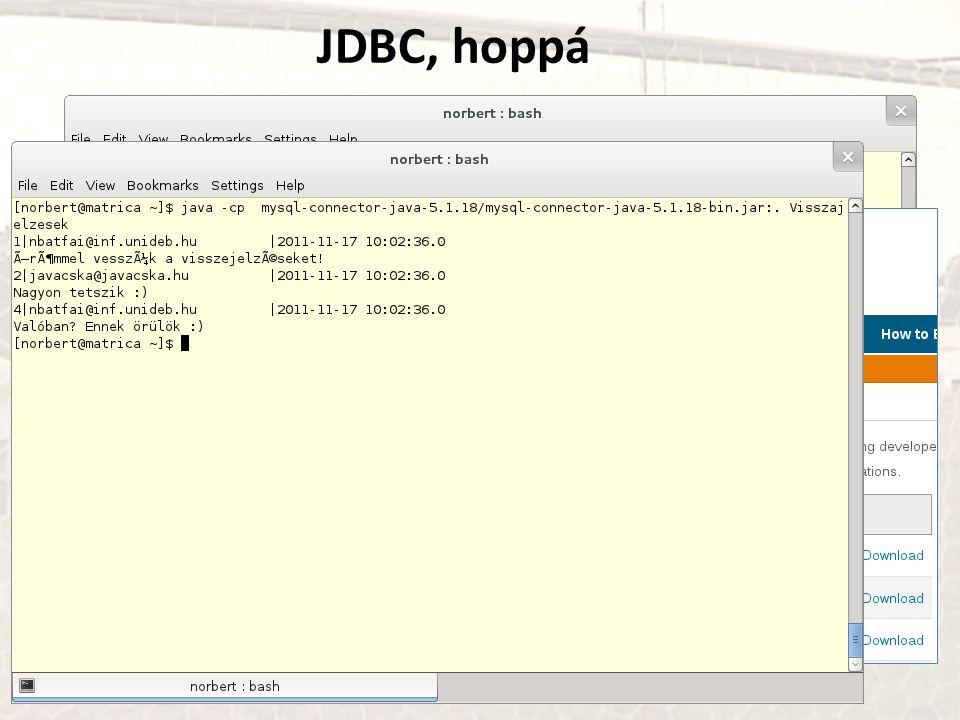 JDBC, hoppá http://www.mysql.com/products/connector/