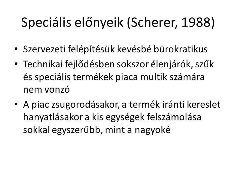 Speciális előnyeik (Scherer, 1988) • Szervezeti felépítésük kevésbé bürokratikus • Technikai fejlődésben sokszor élenjárók, szűk és speciális termékek piaca multik számára nem vonzó • A piac zsugorodásakor, a termék iránti kereslet hanyatlásakor a kis egységek felszámolása sokkal egyszerűbb, mint a nagyoké