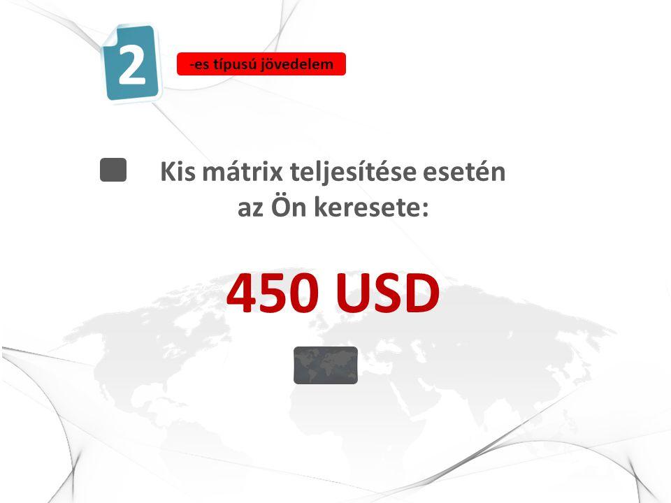 Kis mátrix teljesítése esetén az Ön keresete: 450 USD 2 -es típusú jövedelem
