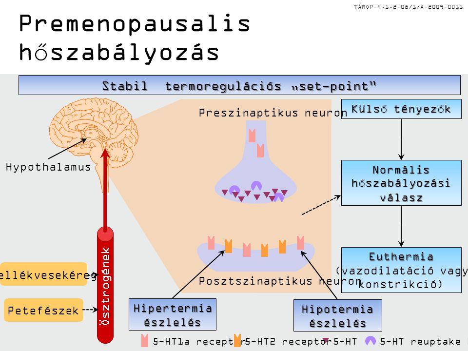 TÁMOP-4.1.2-08/1/A-2009-0011 5-HT1a receptor Külső tényezők Normális hőszabályozási válasz Euthermia Euthermia (vazodilatáció vagy konstrikció) Poszts