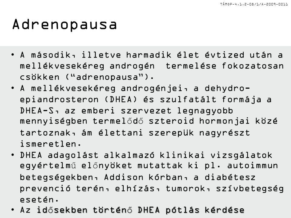 """TÁMOP-4.1.2-08/1/A-2009-0011 •A második, illetve harmadik élet évtized után a mellékvesekéreg androgén termelése fokozatosan csökken (""""adrenopausa"""")."""