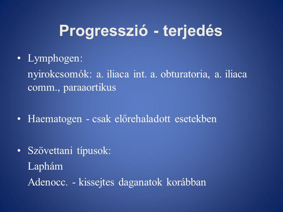 Progresszió - terjedés •Lymphogen: nyirokcsomók: a. iliaca int. a. obturatoria, a. iliaca comm., paraaortikus •Haematogen - csak előrehaladott esetekb