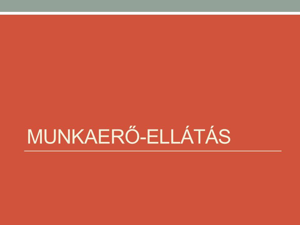 MUNKAERŐ-ELLÁTÁS