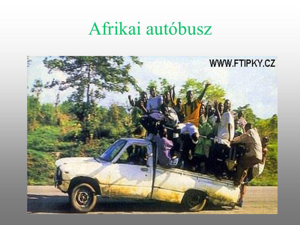 Afrikai autóbusz