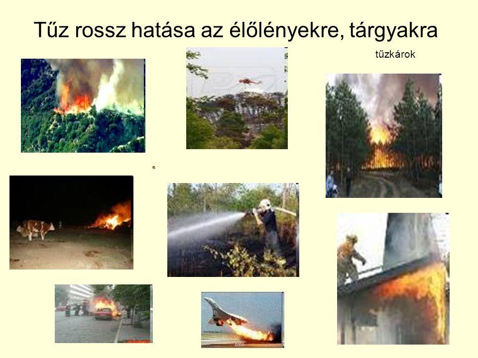 Tűz rossz hatása az élőlényekre, tárgyakra tűzkárok
