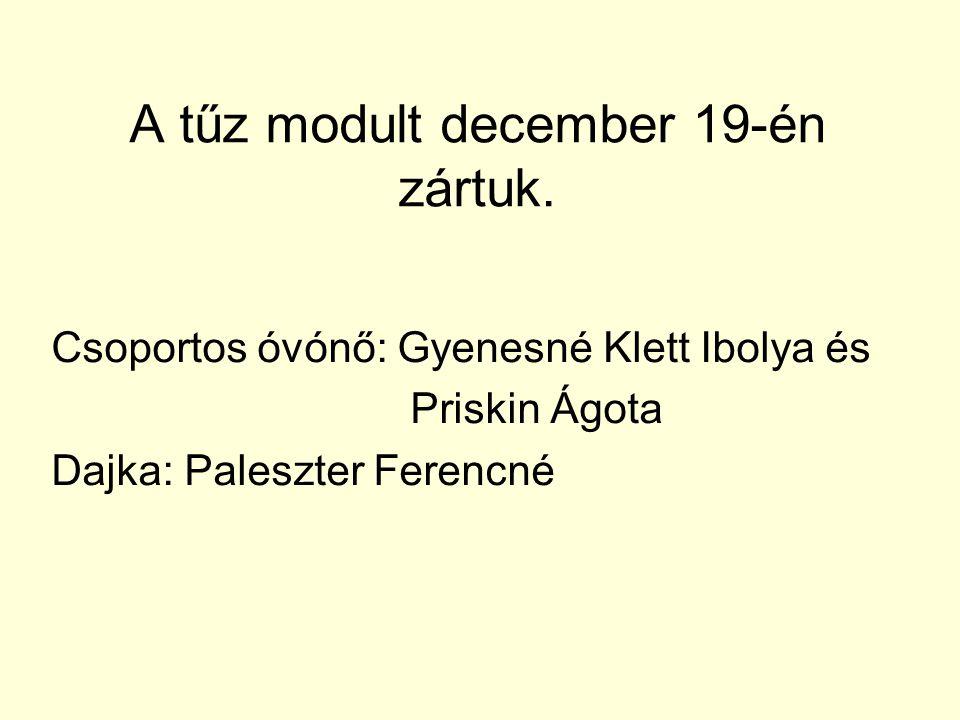 A tűz modult december 19-én zártuk. Csoportos óvónő: Gyenesné Klett Ibolya és Priskin Ágota Dajka: Paleszter Ferencné