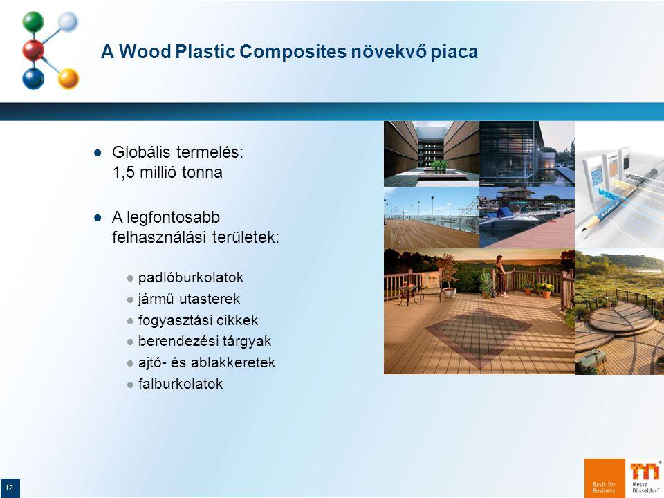 A Wood Plastic Composites növekvő piaca 12 ● Globális termelés: 1,5 millió tonna ● A legfontosabb felhasználási területek: ● padlóburkolatok ● jármű utasterek ● fogyasztási cikkek ● berendezési tárgyak ● ajtó- és ablakkeretek ● falburkolatok