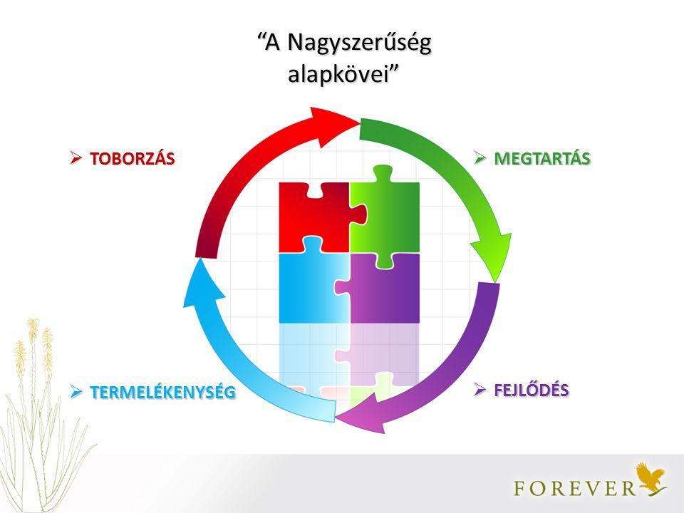 Új Forgalmazó  Jelentkezési lap kitöltése -Rendszerbe kerülés  Első megrendelés -Hálózatépítés lehetősége Productivity Retention Development Recruitment