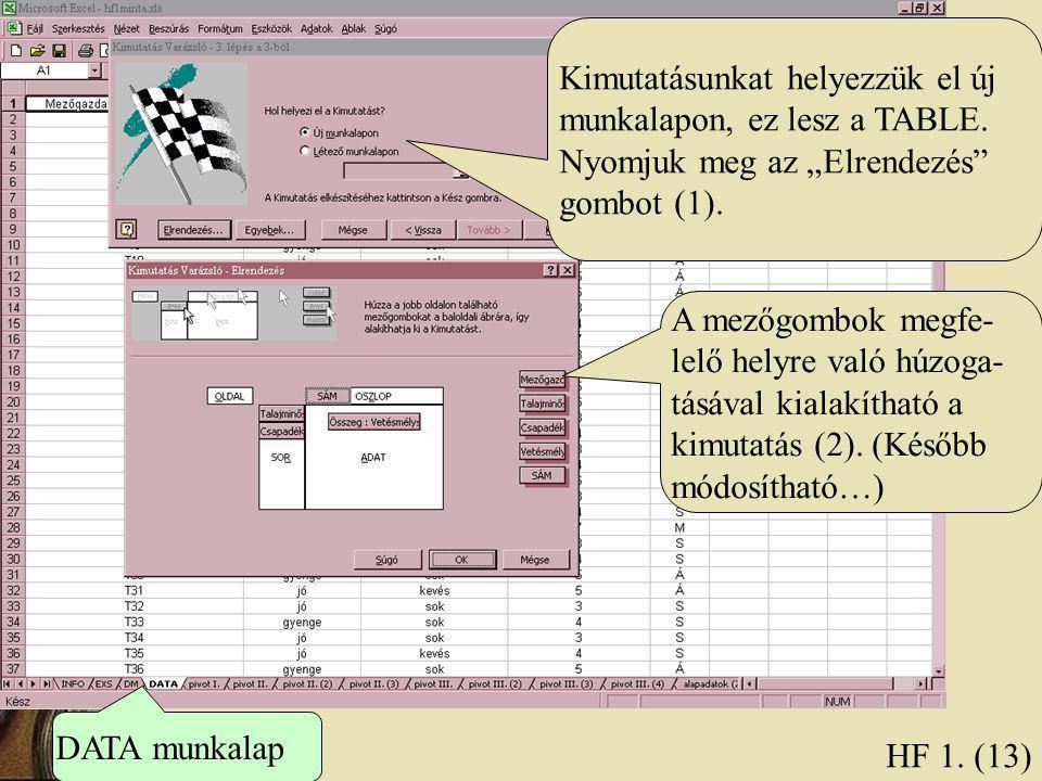 HF 1. (13) Kimutatásunkat helyezzük el új munkalapon, ez lesz a TABLE.