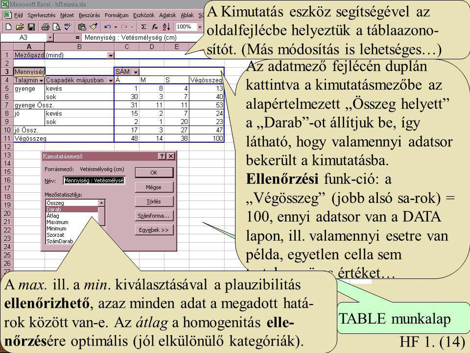 A Kimutatás eszköz segítségével az oldalfejlécbe helyeztük a táblaazono- sítót. (Más módosítás is lehetséges…) TABLE munkalap HF 1. (14) Az adatmező f