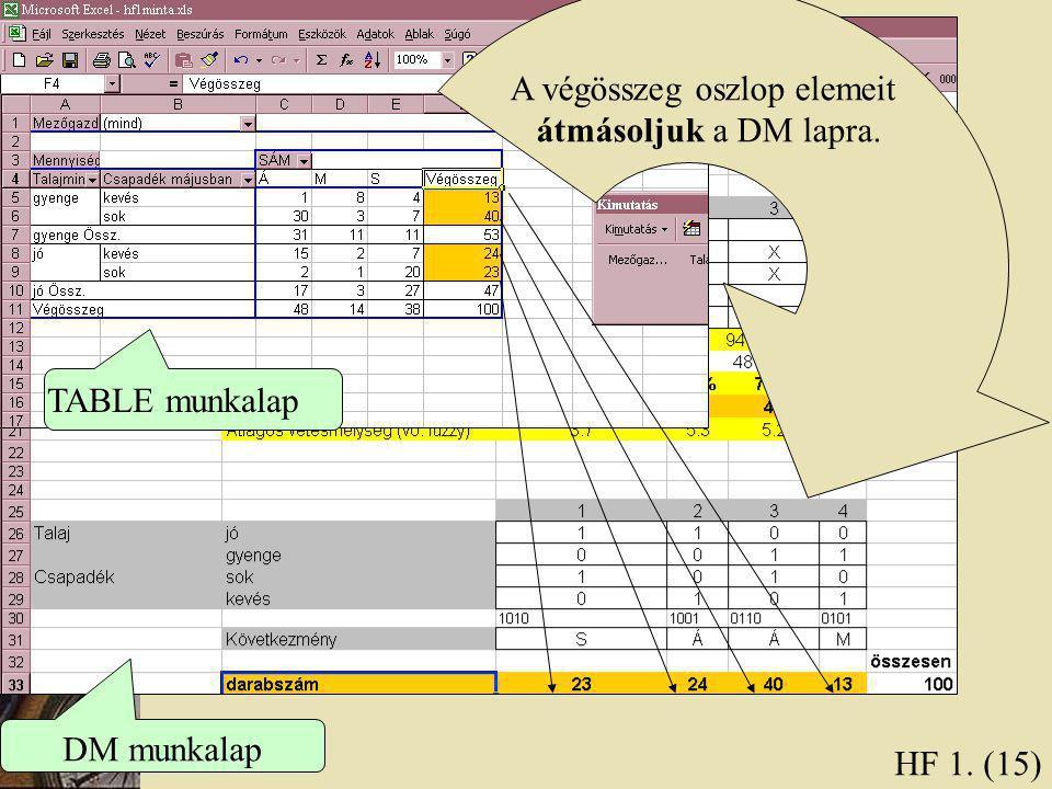 HF 1. (15) A végösszeg oszlop elemeit átmásoljuk a DM lapra. TABLE munkalap DM munkalap