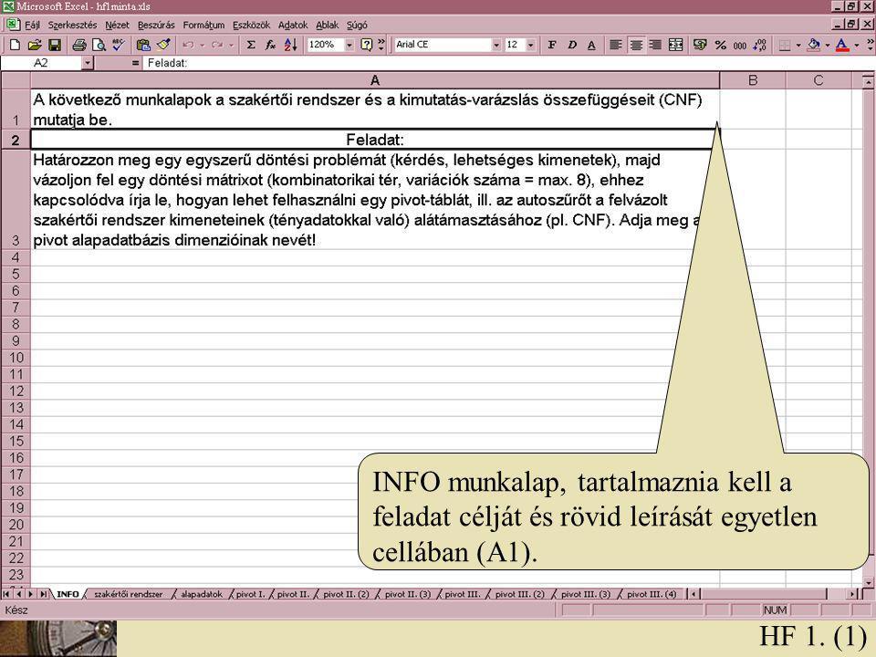 INFO munkalap, tartalmaznia kell a feladat célját és rövid leírását egyetlen cellában (A1).