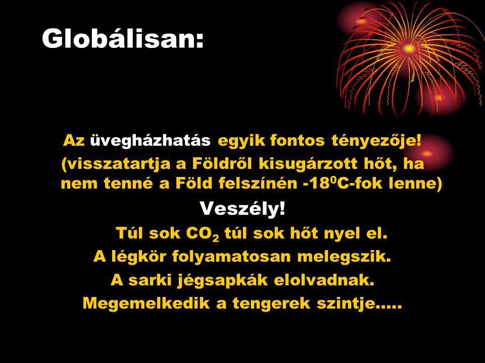 Globálisan: Az üvegházhatás egyik fontos tényezője! (visszatartja a Földről kisugárzott hőt, ha nem tenné a Föld felszínén -18 0 C-fok lenne) Veszély!