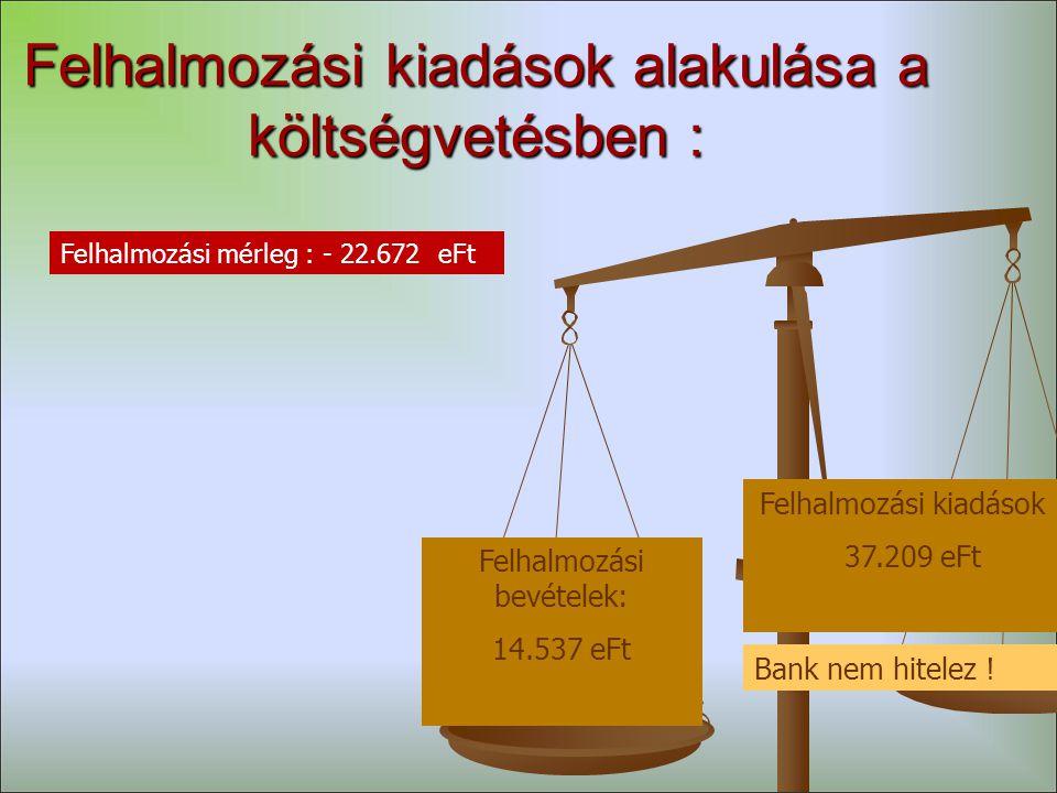 Felhalmozási kiadások alakulása a költségvetésben : Felhalmozási bevételek: 14.537 eFt Felhalmozási kiadások : 37.209 eFt Bank nem hitelez .