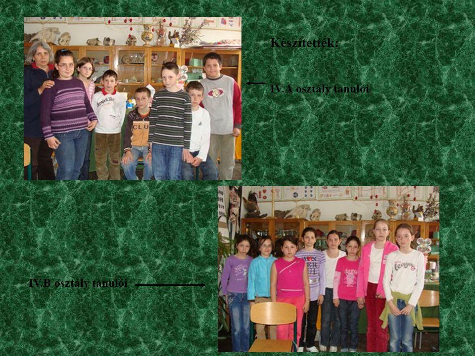 Készítették: IV.A osztály tanulói IV.B osztály tanulói