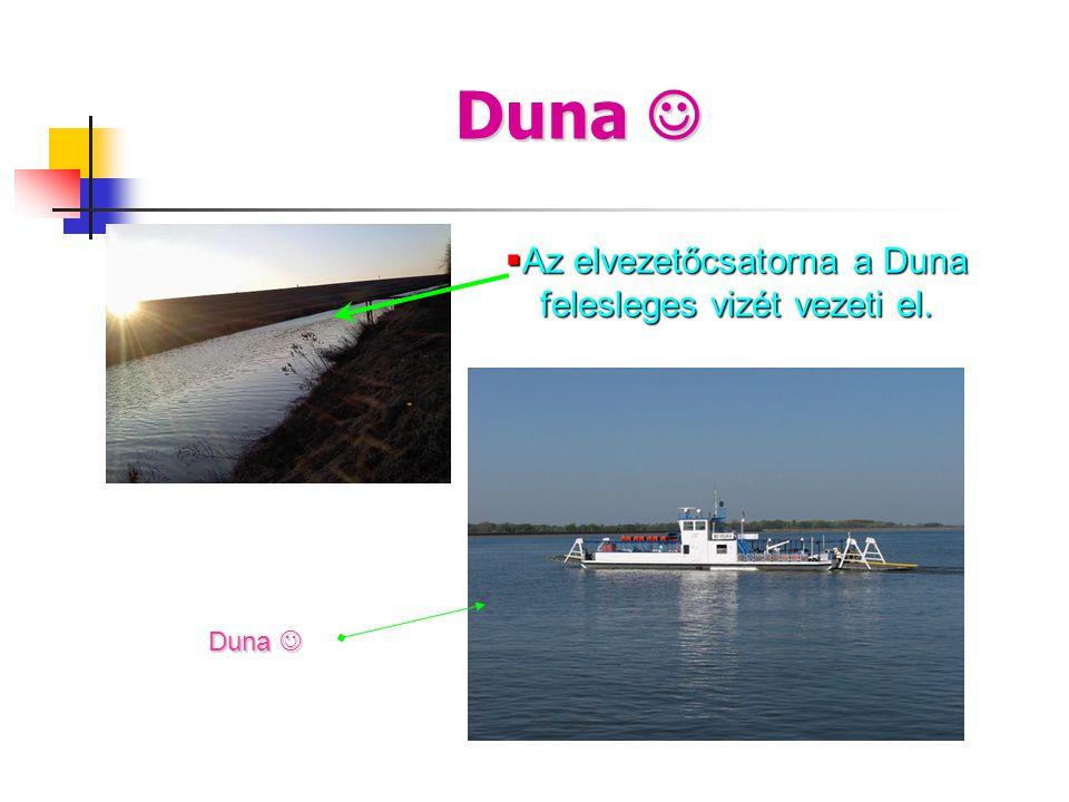 Duna   Az elvezetőcsatorna a Duna felesleges vizét vezeti el. Duna 