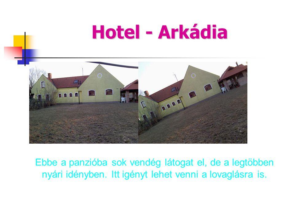 Hotel - Arkádia Ebbe a panzióba sok vendég látogat el, de a legtöbben nyári idényben. Itt igényt lehet venni a lovaglásra is.